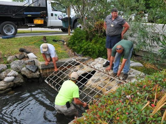 Manatee rescue day 2