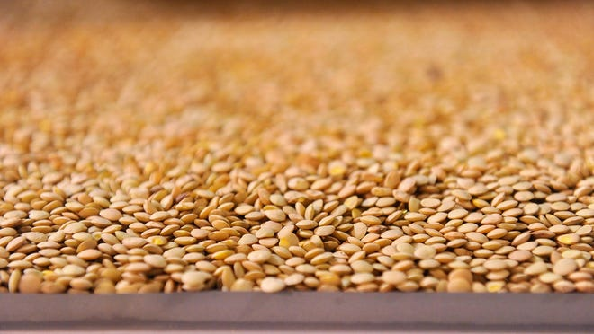 Montana pea and lentil farmers are at risk of being shut out of one of the world's biggest markets for their crops: India.