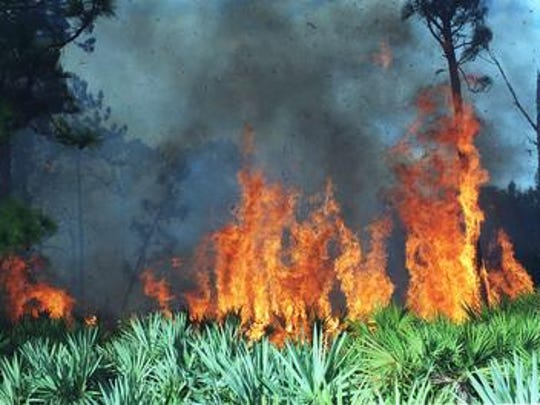 Brevard County Fire Rescue crews battled a 30-acre brush fire overnight in Micco
