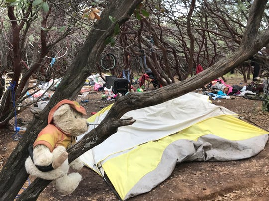 File photo - A child's teddy bear was found in 2017 on the branches of a tree at a homeless encampment, but there was no evidence that children had lived there.