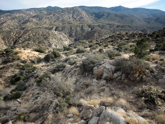 A view of the Santa Rosa Mountains above Deep Canyon, seen from Cahuilla Tewanet Vista Point along Highway 74 on May 28. Scientists have documented uphill shifts in vegetation on mountainsides in the area.