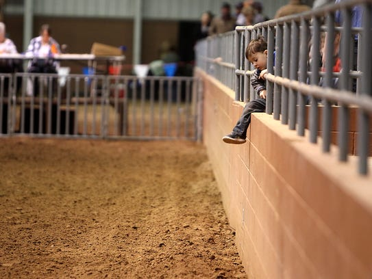 A little boy hangs from the metal bars in the stands