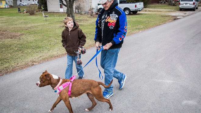 Todd Beard walks Jordan with his grandson, Ben, Thursday evening. Beard adopted Jordan from the Muncie Animal Shelter which has dozens of dogs and more than 160 cats available for adoption.
