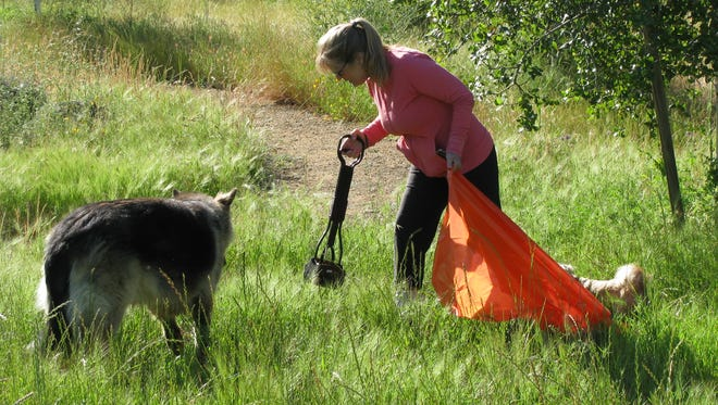 Laura Straw of Redding cleans up dog poop at Turtle Bay East park Wednesday as part of a volunteer cleanup at the park.