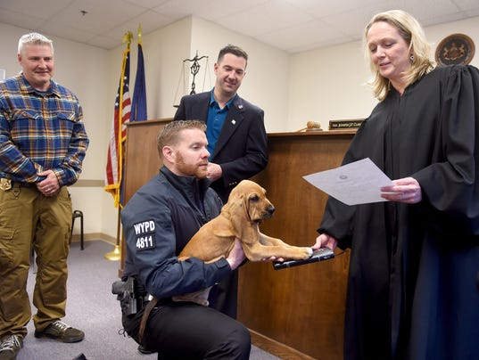 Meet Prince The Bloodhound The Newest West York Officer