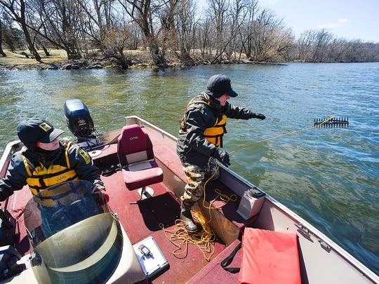Courtney Millaway, left, a Sauk Rapids-based natural resources specialist with the Minnesota Department of Natural Resources, pilots the boat for Chris Jurek, aquatic invasive species specialist, as she collects samples of starry stonewort on Monday, April 4, on Lake Koronis near Paynesville.