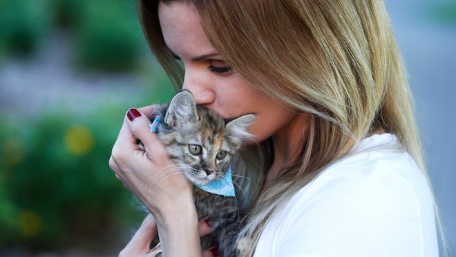Megan Stark cuddles a kitten delivered to her downtown Phoenix office by Uber as part of an adoption drive with Arizona Humane Society.