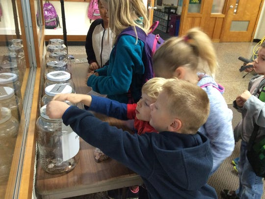 Hatley Elementary School students drop pennies into jars for a penny war.