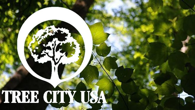 City of Fairview is applying to become a Tree City in hopes of raising awareness in the community.