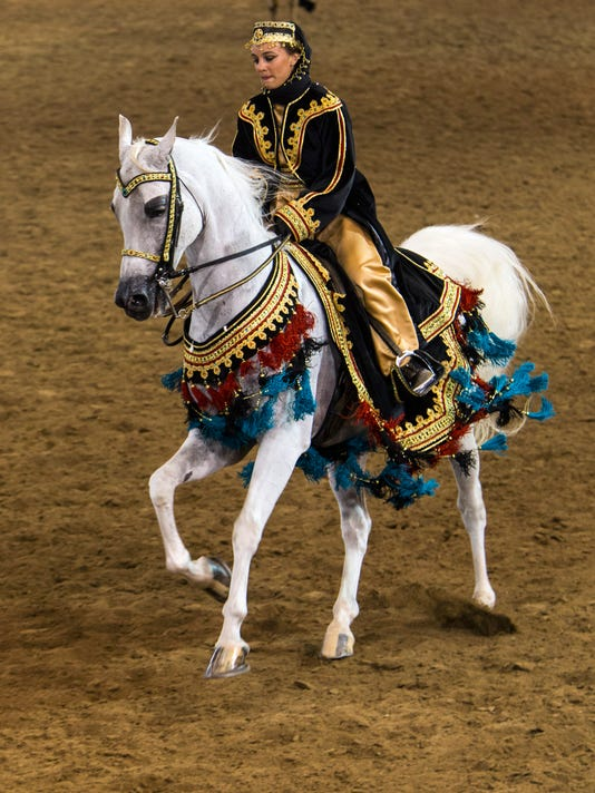 PNI Arabian 60