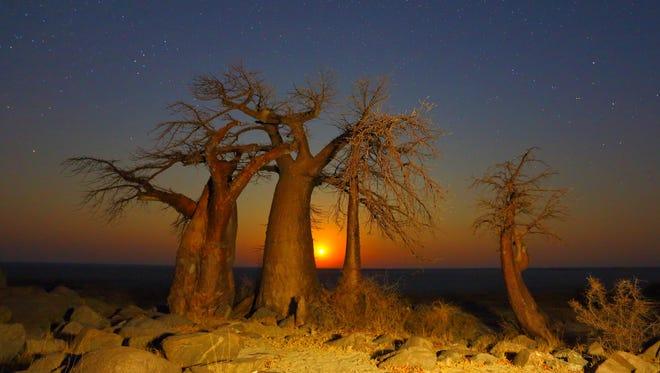 Moonrise at Kubu Island in Botswana. Botswana earned the number 1 spot among top travel destinations for 2016.