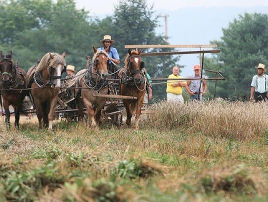 636030020619381338-wagon.jpg