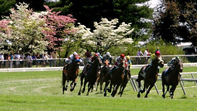 Horses round the turn at Keeneland.