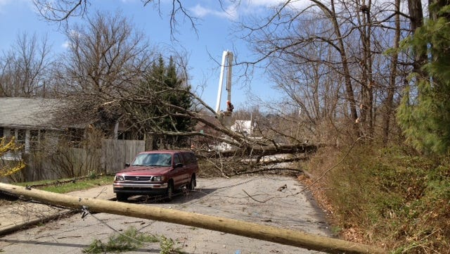 Power poles and a large tree block Woodrow Avene in Asheville on Sunday.