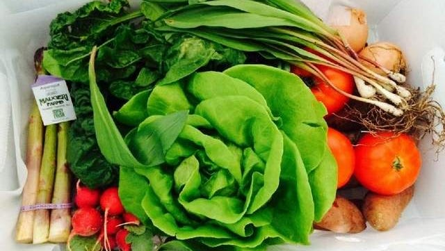 Just Farmed box full of just picked fruits & vegetables