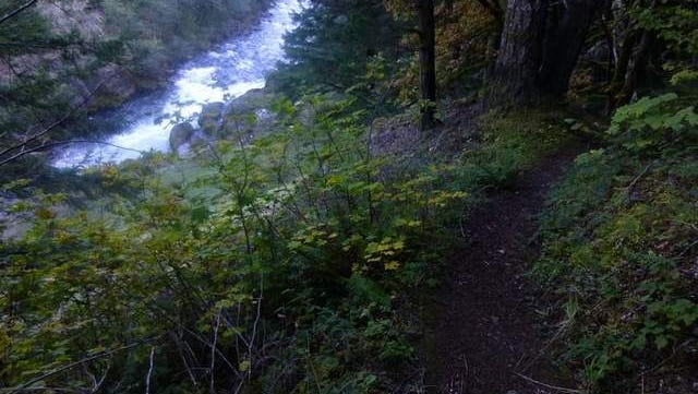 The Clackamas River Trail follows the beautiful and scenic Clackamas River.