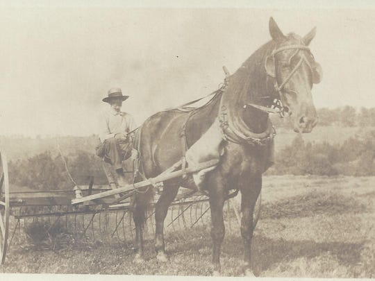 Gardner Fraziler with his horse and hay rake in 1919.