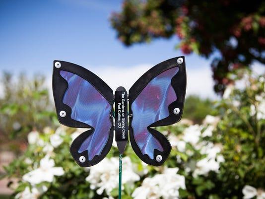636350471086512954-Butterfly-Project-web-share.jpg