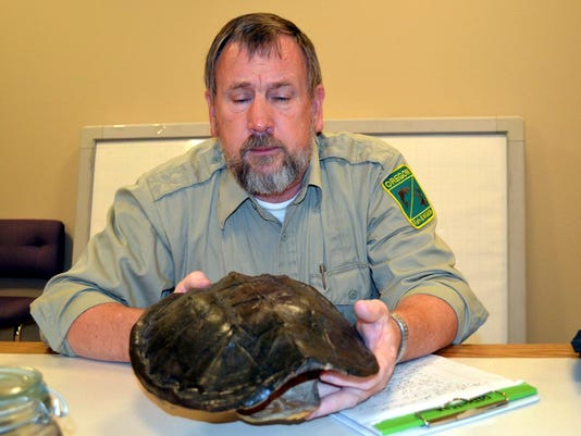 rick boatner snapping turtle