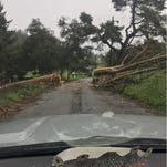 Salinas battles outages and over 650 downed trees