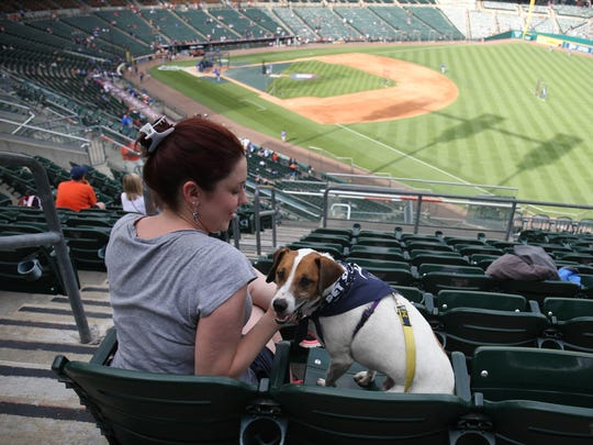 Tigers fan Brittany Hauncher and Puck, her Jack Russell