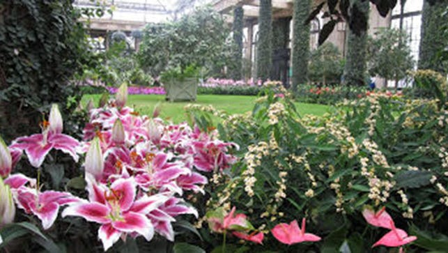 The conservatories of Longwood Gardens and can be enjoyed during a deluxe day trip to the Chadds Ford area.