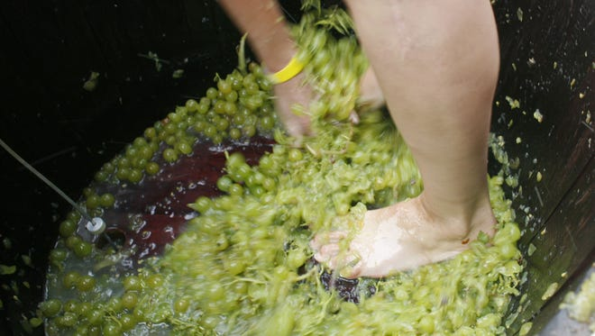 Grape stomping is one activity during the Carlton Crush festival on Sept. 10.