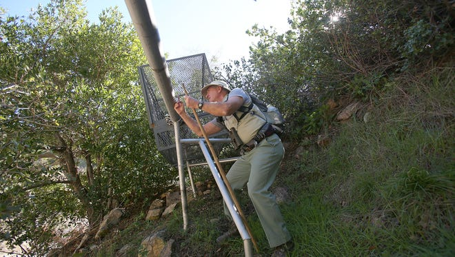 Retired Forest Service employee Gary Earney examines a pipe that Nestle Waters North America uses to carry water across the San Bernardino National Forest. The water is bottled as Arrowhead 100% Mountain Spring Water.