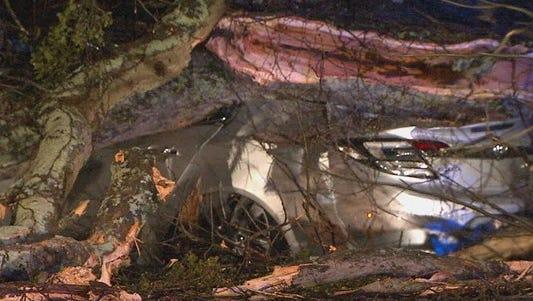 A fallen tree demolished a car in Georgia on Tuesday, March 21, 2017.