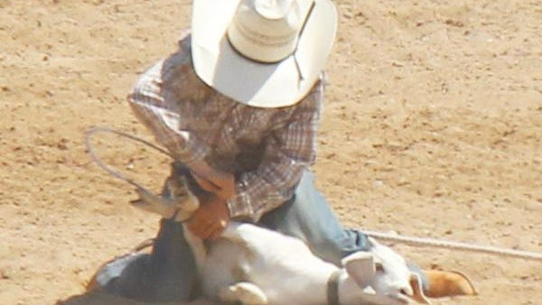 Trave Sharon of Ordway in goat tying at the La Junta Kids Rodeo. Sharon was the junior boys all-around champion.