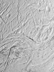 Enceladus has intrigued scientists since data confirmed