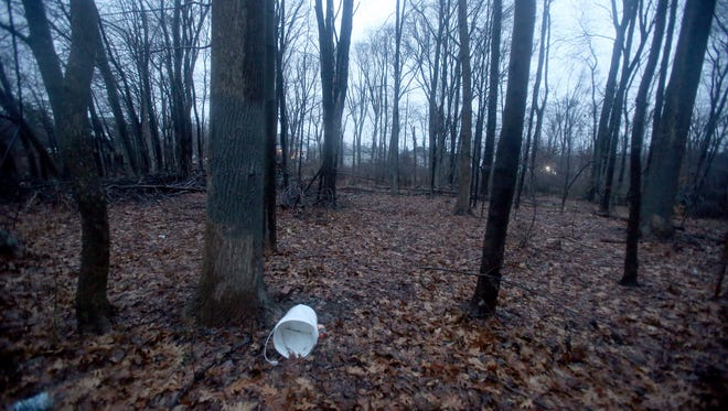 Swastikas and racist remarks that were spray painted on trees in New City over seven months ago were covered over Tuesday afternoon after The Journal New/Lohud reported on the graffiti. Gray paint covers the areas on the trees where the graffiti appeared.