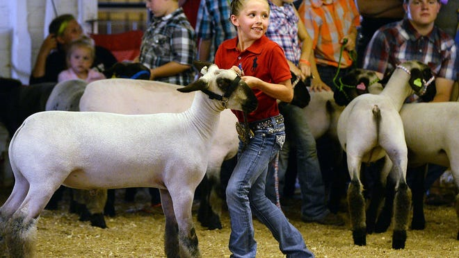 Graci Kosiorek, 8, won first place in her class during the Market Lamb Show at the Waterford Community Fair in 2018.