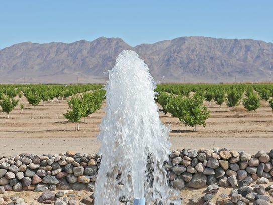 Water flows into a pond on Cadiz Inc.'s farmland in