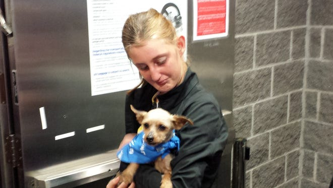 """Karisa Lambert, 14, reacts as she is reunited with her Yorkshire terrier """"Sam"""" on Wednesday, April 29, 2015, at New Orleans' international airport Kenner, La. The dog,  picked up as a stray in Iowa, was stolen in 2012.."""
