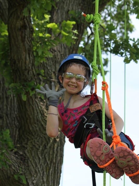 Treetop Explorer