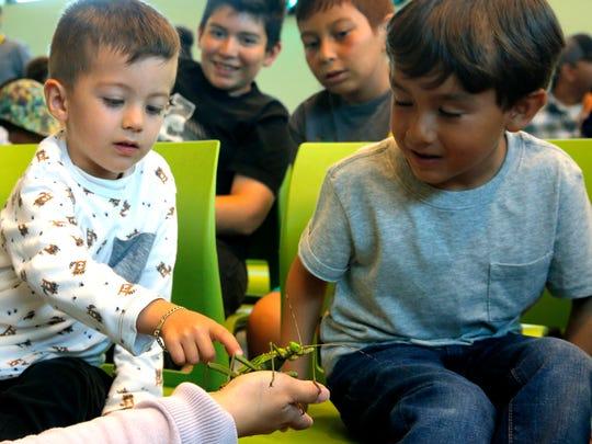David Marquez, 3, pets a walking leaf while Juan Pablo Gonzalez, 5, looks on.