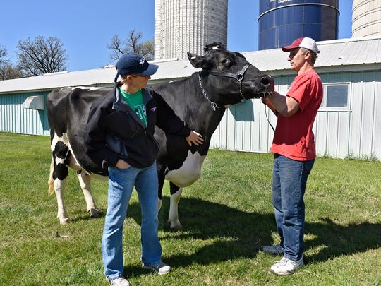 Natalie and Mark Schmitt look at one of the dairy cows from the herd on their family farm Wednesday, May 4, near Rice. The Schmitts will host a Farm Camp for Central Minnesota children in grades three through six July 26.