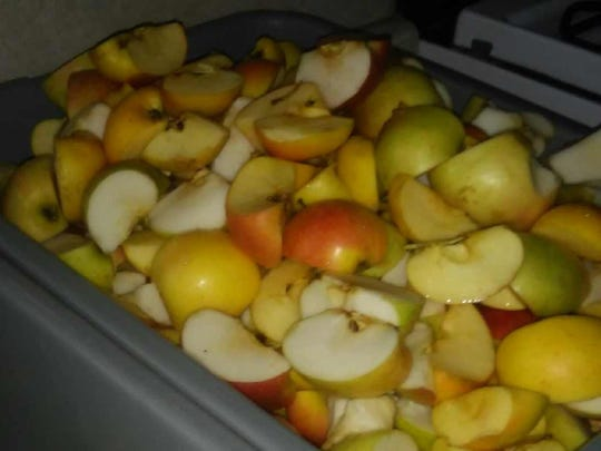 Lovina's daughters help cut up apples for the applesauce