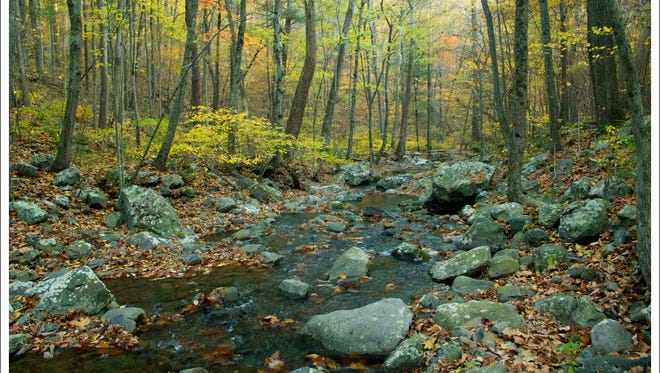 The Shenandoah Wilderness in Virginia is one of the 67 wilderness areas in the Dirty Dozen Wilderness Hiking Challenge.
