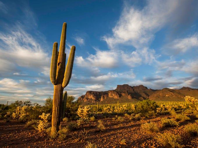 The sun sets over the Superstition Mountains, Saturday,