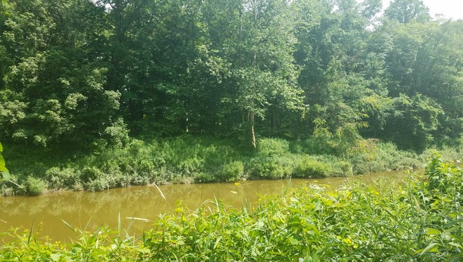 St. Clair County will be installing a kayak launch along the Black River at Woodsong County Park in Clyde Township.