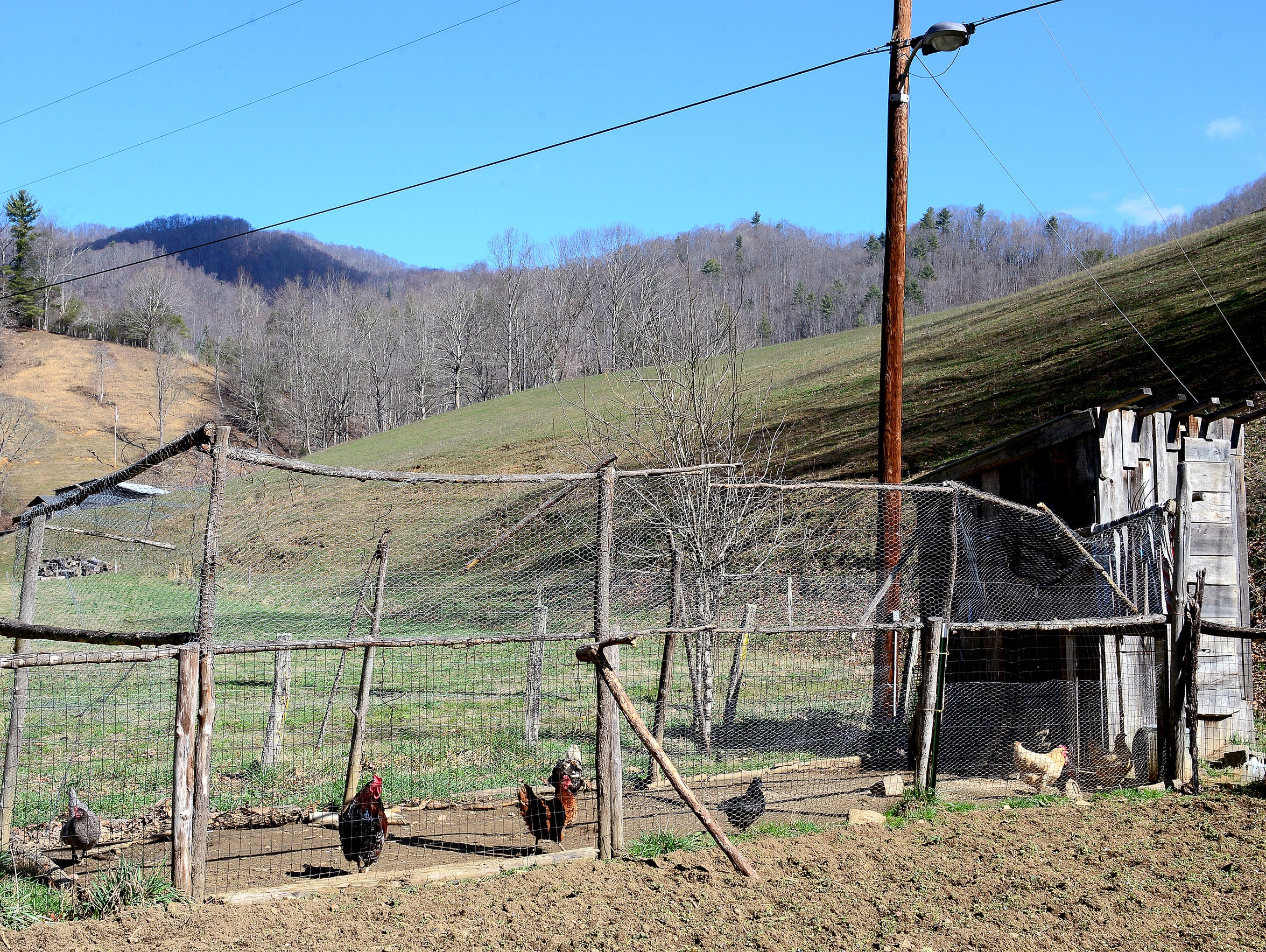 David Cooke has a chicken coop on his property in rural