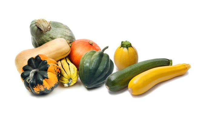 Squash varieties.