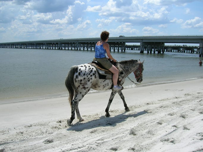 At Florida's Amelia Island State Park, visitors can ride horses on the beach.