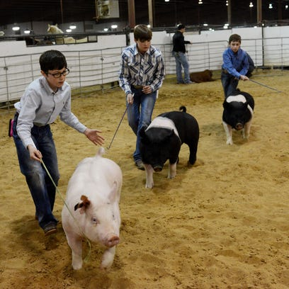 Ag Expo brings the farm to the Twin Cities