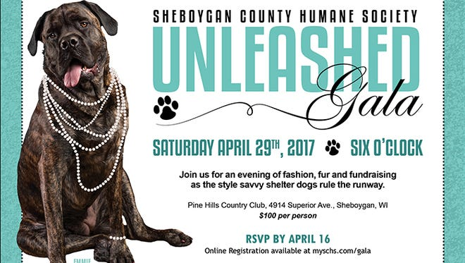 Community is invited to the SCHS Unleashed Gala on April 29.
