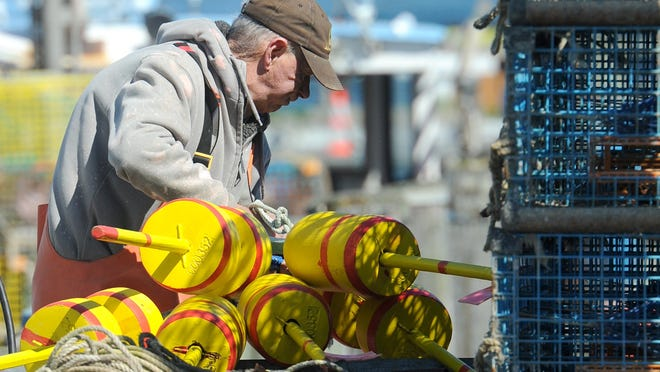 """Lobsterman Bob Bleakley gets ready to set his traps in Cape Cod Bay earlier this year. Research is being conducted on an area of the bay known as """"The Blob,"""" where de-oxygenated water is killing lobster and fish."""