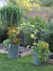"This garden, from ""Container Gardening Complete,"" includes"