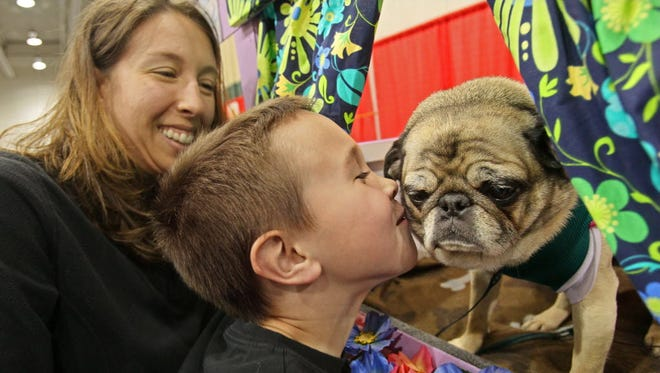 The 14th Annual Milwaukee Pug Fest is at the Milwaukee County Indoor Sports Complex May 20.